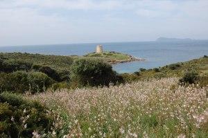 Sardegna, costa meridionale