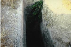 Cagliari, Tuvixeddu, tomba punica con disco rosso