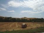 Toscana, paesaggio agrario