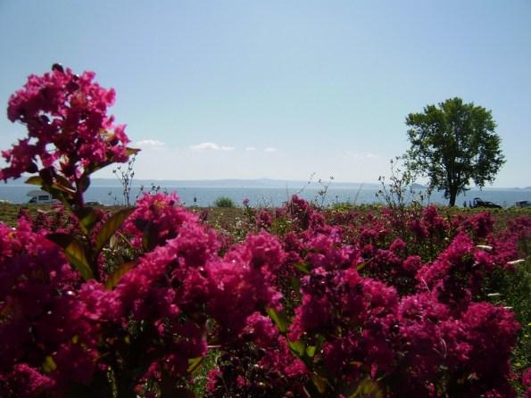 Toscana, litorale