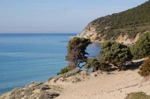 Sardegna, dune e ginepri sul mare