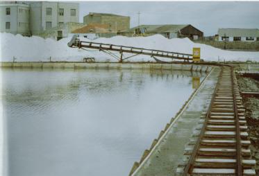 Carloforte, Saline, raccolta del sale (1991)