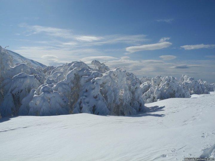 Marche, Monte Catria innevato