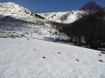 Desulo, Gennargentu, foresta diGirgini