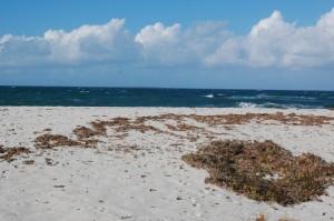 Cabras, spiaggia di Is Aruttas