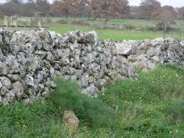 Sardegna, muretto a secco, recinzione tipica dopo l'editto delle chiudende (1820-1823)