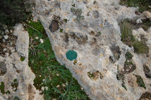 """Cagliari, Sella del Diavolo, """"pallino verde"""" di segnalazione del sentiero"""