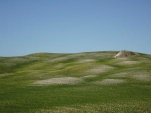 Castell'Azzara, colline