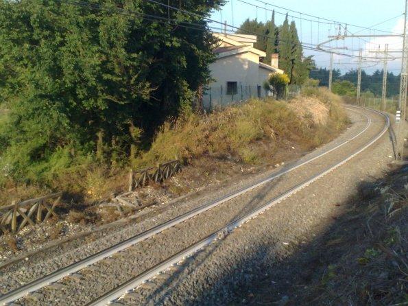 Morlupo, effetti del diserbante lungo la linea ferroviaria, presso abitazioni
