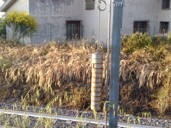 Morlupo, effetti del diserbante lungo la ferrovia, presso abitazioni