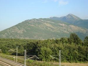 Rocca d'Evandro, Bosco Vandra