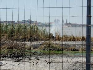 Cagliari, Molentargius, il fuoco riprende nel canneto