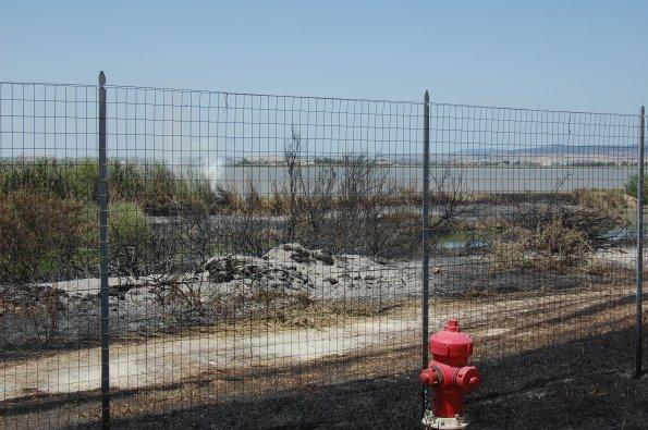 Cagliari, Molentargius, incendio (17 giugno 2012)