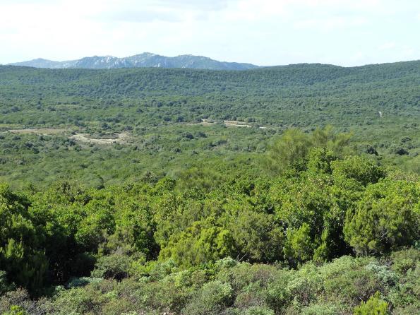 Maracalagonis, massiccio dei Sette Fratelli, Monte Paulis