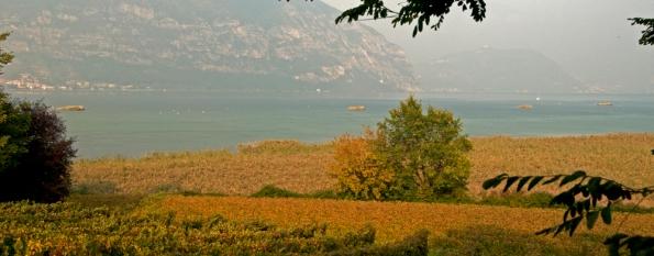 """Lago d'Iseo, capanni di caccia davanti alla Riserva naturale orientata regionale """"Torbiere del Sebino"""""""