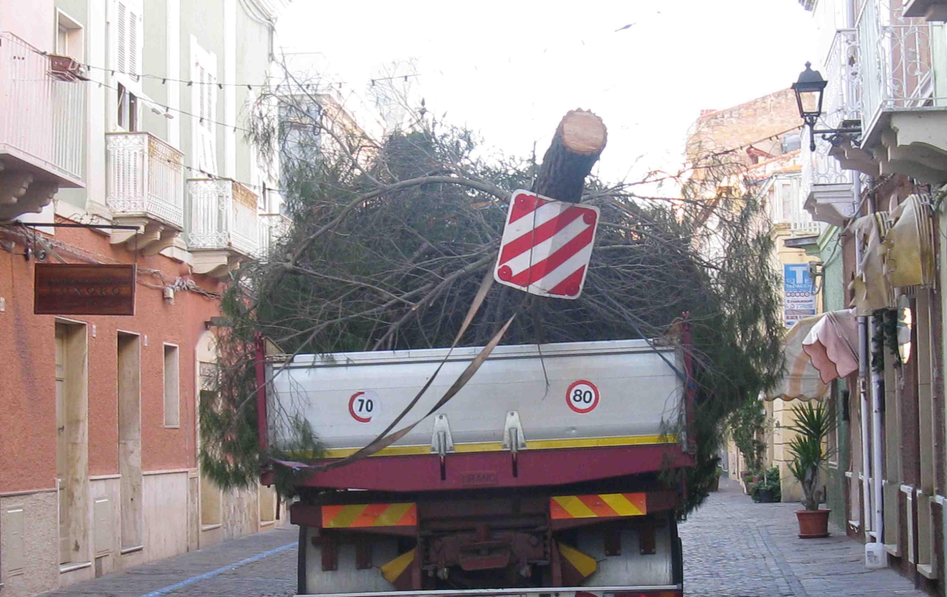 """Carloforte, trasporto dell'albero di Natale """"tagliato"""" (2012)"""