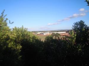 Sassari, Tottubella, lavori per la realizzazione di una centrale a biomassa