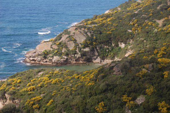 Bosa, costa di Torre Argentina