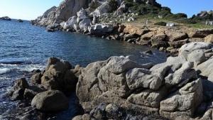Golfo dell'Asinara, marea nera, inquinamento