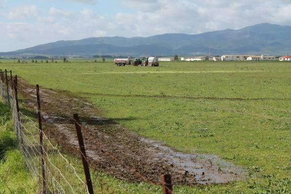 Decimoputzu, spargimento liquami in area agricola