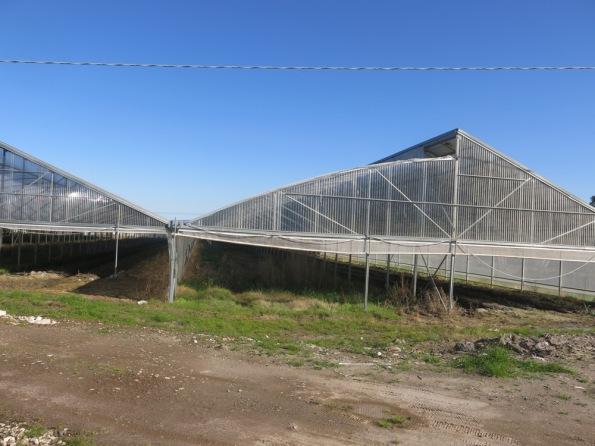 Giave, Campu Giavesu, serre fotovoltaiche (marzo 2014)