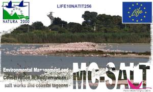 """logo progetto """"LIFE+ NATURE MC-SALT - Environmental Management and Conservation in Mediterranean salt works and coastal lagoons"""""""