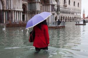 Venezia, acqua alta, 1 novembre 2012
