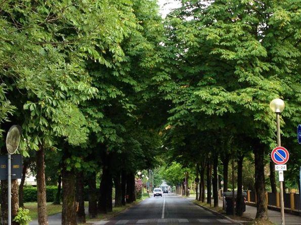 Abano Terme, Via Mazzini, Via Mazzini, storico stradone di accesso alla Villa comunale Bassi Rathgeb
