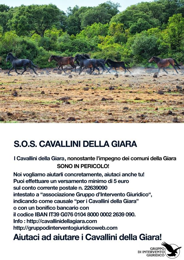 campagna di sostegno per i Cavallini della Giara