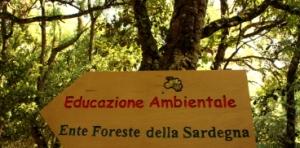 E.F.S., itinerario di educazione ambientale