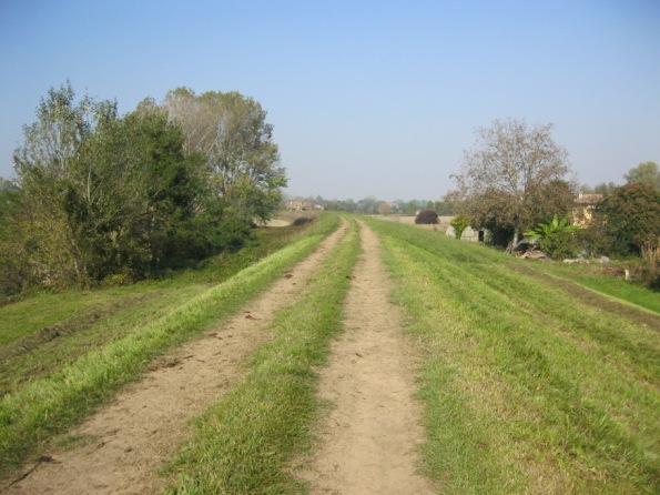 viabilità su fondo naturale, pista ciclabilissima (se si vuole)