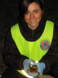 volontaria in una campagna di salvataggio dei Rospi