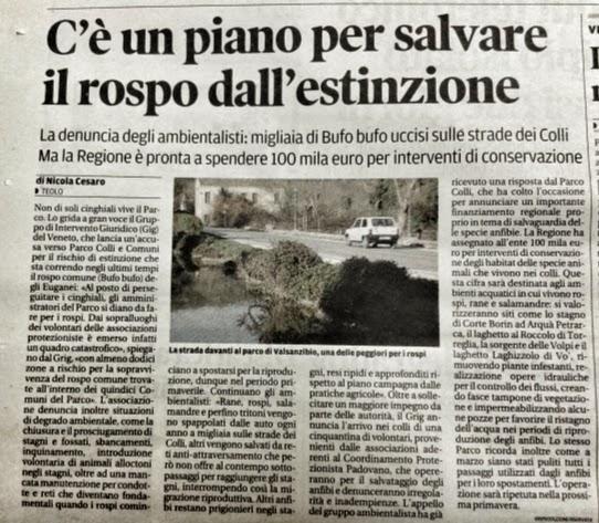 Il Mattino di Padova, 12 novembre 2014