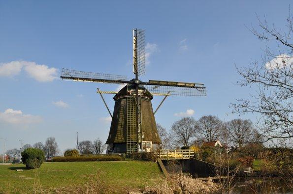 Olanda, mulino a vento (da www.turistipercaso.it)