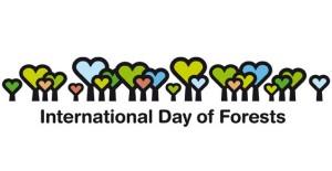giornata_internazionale_foreste