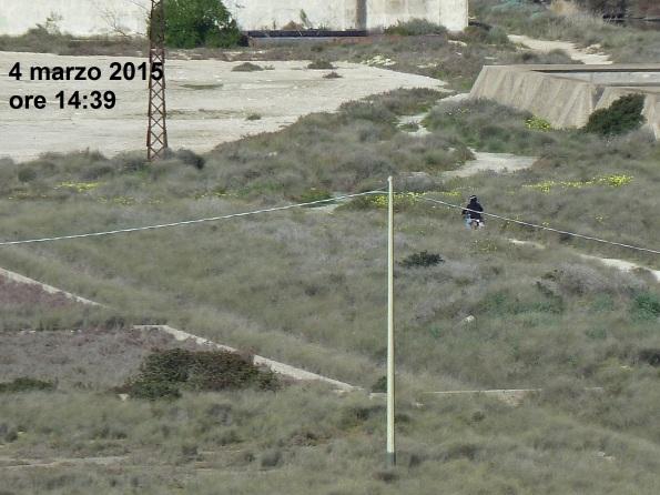 "parco naturale regionale ""Molentargius – Saline"", motocross (4 marzo 2015)"