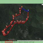 Foresta demaniale del Marganai, secondo taglio 2012