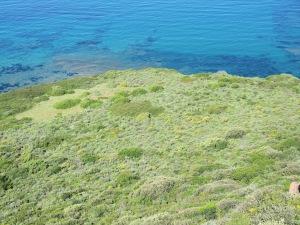 mare e coste (foto Benthos)