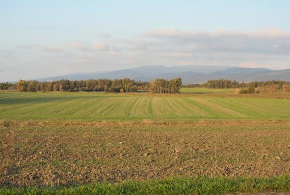 paesaggio agrario (foto Benthos), così era la campagna veneta