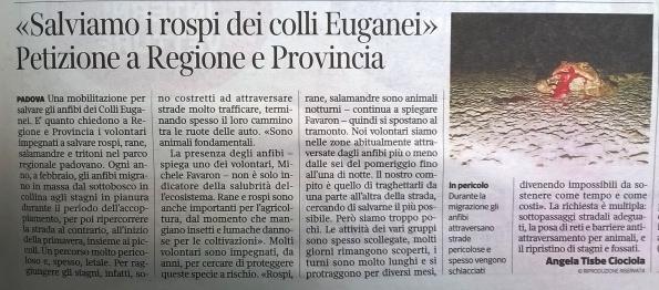 Il Corriere del Veneto, 28 luglio 2015