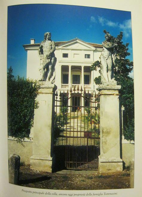 """Veggiano, Villa Tommasini, Magnolia grandiflora (da S. Marzari, """"Veggiano, frammenti di storia e vita quotidiana"""", pag. 87)"""