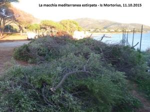 Quartu S. Elena, Is Mortorius, macchia mediterranea estirpata