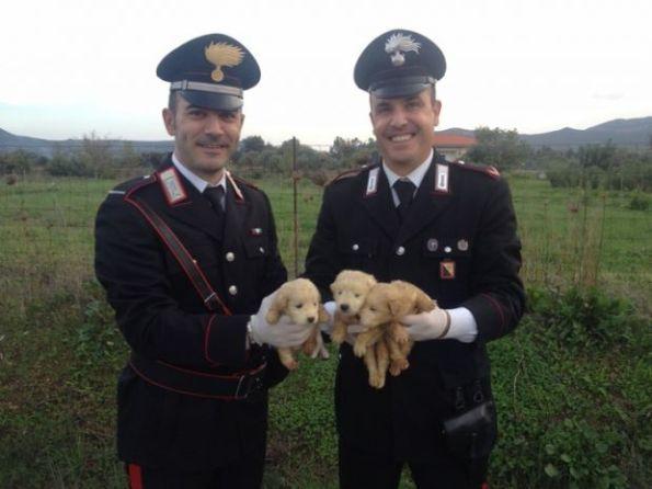 Narcao, Perdaxius, i Carabinieri con i cagnolini