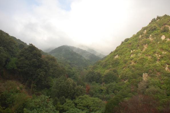 Sardegna, versanti boscosi