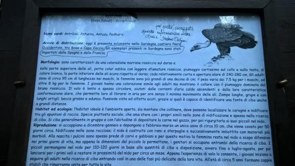 """Foresta demaniale """"Sette Fratelli"""", cartello didattico sul Grifone con richiesta di correzione"""
