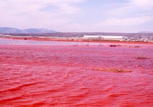 "Portovesme,  bacino ""fanghi rossi"" bauxite (foto Raniero Massoli Novelli, 1980)"