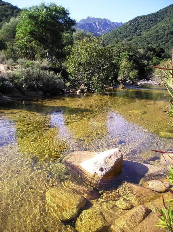 foresta mediterranea del Sulcis