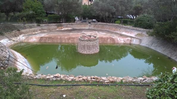 Cagliari, parco comunale di Monte Urpinu, laghetto lato Via Vidal (5 gennaio 2016)
