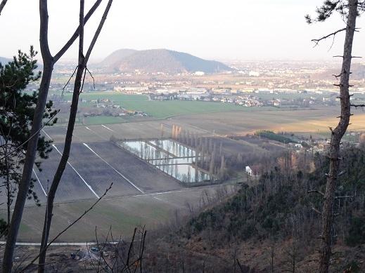 Colli Euganei, area umida di Torreglia