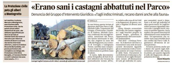 Mattino_2017-04-02_Torreglia taglio alberi